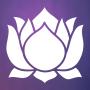 icon Meditation Experience